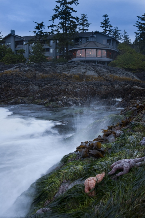 GOODS: The Pointe At The Wick In Tofino Hosting La Quercia, La Régalade, And More : Scout Magazine