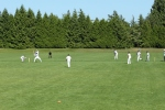 Ah! Such a joy to watch a game of cricket on a sunny summer's day. I craved cucumber sandwiches...