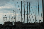 A collection of masts