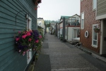 A street of floating homes. One was for sale at $295k. I was tempted...