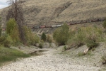 The train echoing the old travel route of the Thompson itself. CP Rail on the South side. The river is hidden by the sand bank.