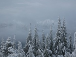 """Dog Mtn: """"Socked in"""", but there were brief breaks in the cloud"""