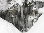 Grouse: freeze+thaw+freeze=