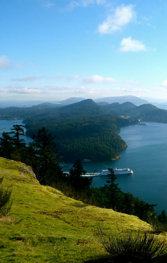 GET YOUR ASS OUTSIDE: On Finding Mount Galiano (And Getting To The Very Top Of It) : Scout Magazine