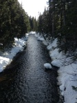 View from one of the bridges in Callaghan Valley
