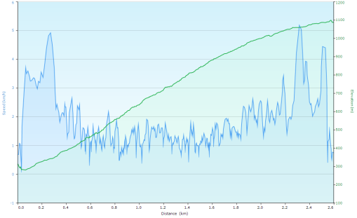 Speed and Elevation as I progressed up the BCMC