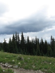 "As we traversed the alpine meadow we could see spectacular rainstorms in the distance. They were loud but thankfully ""not here""!"