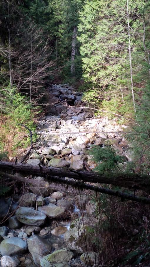 Mosquito Creek