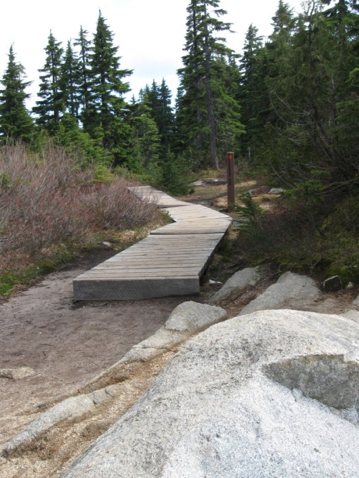 Boardwalk to Cabin Lake