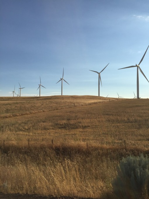 Washington wind collection