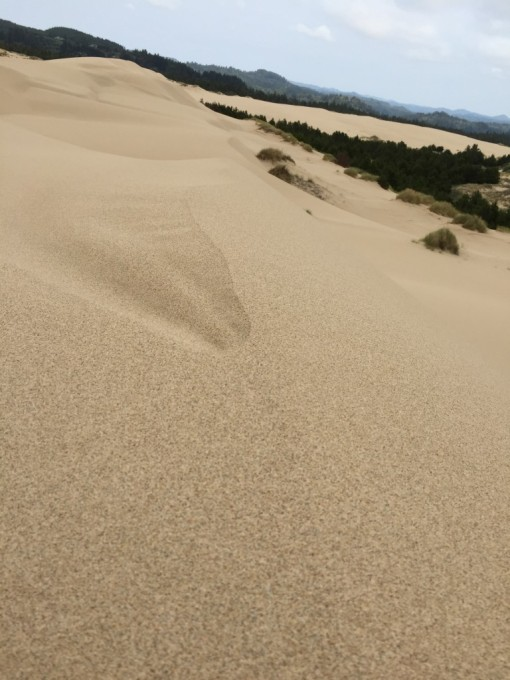 Crest of the dune