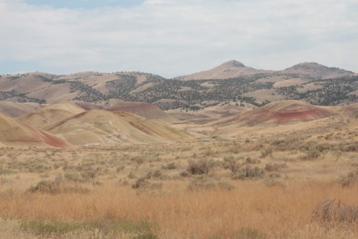 Yup - those are Painted Hills alright!