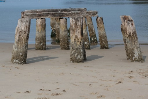 Pilings left from some old structure