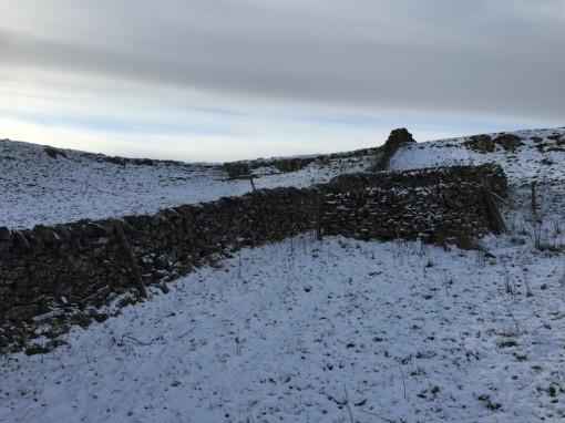 Sheep pen on the moor near Malham Tarn